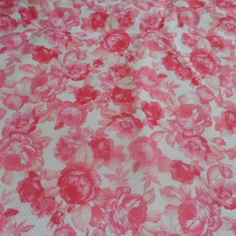 Fucsia Roses