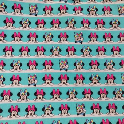 Shy Minnie